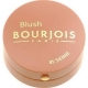 Bourjois Paris Blush 85 Sienne 2,5g