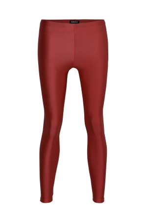 Shiny Workout Legging