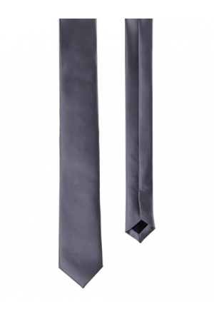Men's Silk Ties in Silver