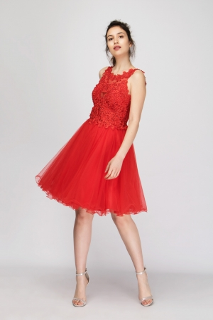 A-Line Tulle Lace Dress