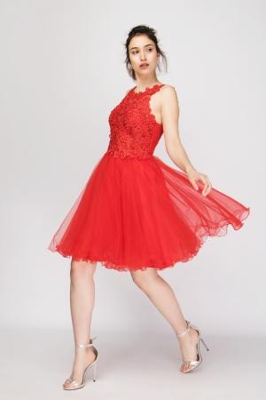 Φόρεμα με Τούλι και Δαντέλα